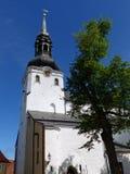 Toomkirik,圆顶大教堂,塔林 库存照片