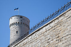 Toompea城堡在塔林 免版税库存照片