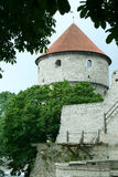 Toompea Castle in the old town of Tallin Stock Images