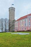 Toompea castle and Parliament building in Tallinn in Estonia Stock Photos