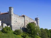 Toompea Castle on Toompea hill Tall Hermann tower. Tallinn, Estonia.  Stock Images