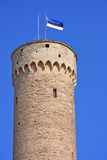 Toompea tower Royalty Free Stock Image