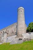Toompea tower. In summer day. Tallinn, Estonia Stock Photos