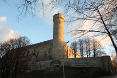 Toompeakasteel & Pikk Hermann Tower Tallinn Estonia Stock Afbeeldingen