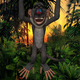 Toon Baboon Stock Photography