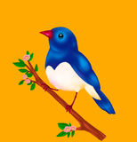 Toon canary-bird blue Royalty Free Stock Photography