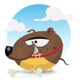 Toon Dog Catching un os Photos stock