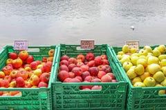 Toon drie van verse Appelen in groene plastic vruchten manden door de rivier royalty-vrije stock foto