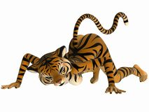 Toon Figure - Tiger Royalty Free Stock Photography