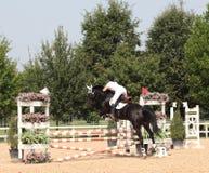 Toon het springen Stock Fotografie