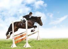 Toon het springen Royalty-vrije Stock Foto
