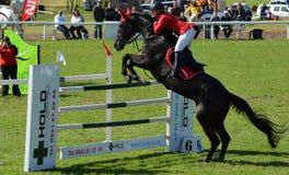Toon het Springen Paard en Ruiter Royalty-vrije Stock Foto