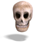 Toon Skull Is Watching You Stock Photos