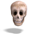 Toon skull  is watching you Royalty Free Stock Images