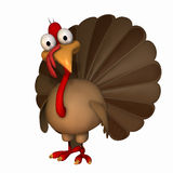 Toon Thanksgiving Turkey Stock Photos