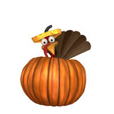 Toon Turkey in Pumpkin Stock Photo