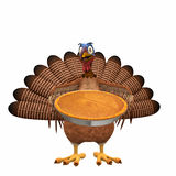 Toon Turkey - Pumpkin Pie. A smiling cartoon turkey holding out a pumpkin pie. Isolated on a white background Stock Photo