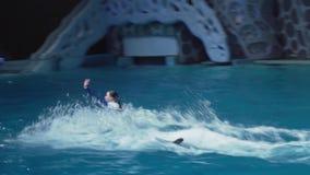 Toon van dolfijnen op het Centrum voor Oceanografie en Marine Biology Moskvarium-de video van de voorraadlengte stock video