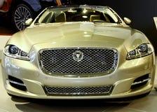 Jaguar XJ Royalty-vrije Stock Afbeelding