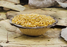 Toor dal Royalty Free Stock Photography