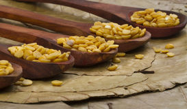 Toor dal Royalty Free Stock Images