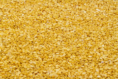 Toor dal Royalty Free Stock Image