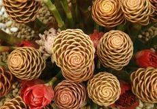 Toorts Ginger Flower Royalty-vrije Stock Afbeeldingen