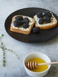 Toosts met roomkaas, braambessen, thyme en honing op een zwarte plaat Heerlijk ontbijt met vegetarische toosts van verse berr Royalty-vrije Stock Foto
