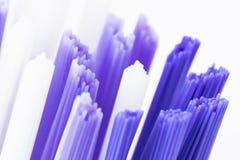 Tootbrush bristles close up. Macro shot of blue and white toothbrush bristles royalty free stock images