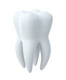 Tooth Royalty Free Stock Photos