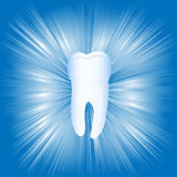 Tooth. On the bright abstract background, vector illustration, eps10 Royalty Free Stock Photo