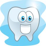 Tooth. A shiny clean tooth smiling Stock Image
