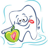 Tooth and apple. Happy tooth and apple. Vector illustration Royalty Free Stock Images