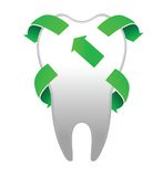 Tooth with arrows. Tooth with green arrows on the white Royalty Free Stock Image