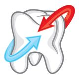 Tooth with arrows Royalty Free Stock Photos
