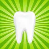Tooth With Beams. Vector Stock Images