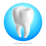 Tooth on a blue background. Vector. Gradient mesh Royalty Free Stock Image