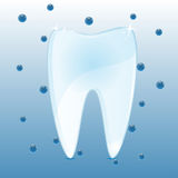 Tooth and blue bubbles Royalty Free Stock Photography