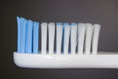 Tooth brush. A closeup of a tooth brush royalty free stock images
