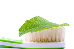 Tooth-brush. Stock Images