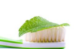 Tooth-brush. Stock Afbeeldingen