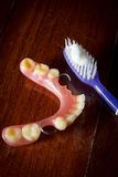 Tooth brush and dentures. Royalty Free Stock Photography