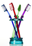 Tooth brush in holder. Colored tooth brushes sit in a blue holder against a white background in a studio environment royalty free stock image