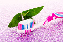 Tooth brush and mint leaves Royalty Free Stock Photo