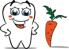 Tooth with carrot Royalty Free Stock Image