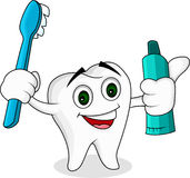 Tooth cartoon character Stock Photos