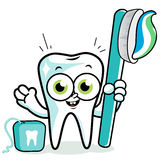 Tooth cartoon holding toothbrush and dental floss. Stock Images