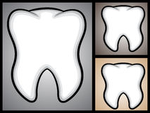 Tooth Stock Images
