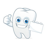 Tooth cartoon mascot hold business card Stock Images