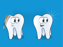 Tooth Cartoons Stock Photography